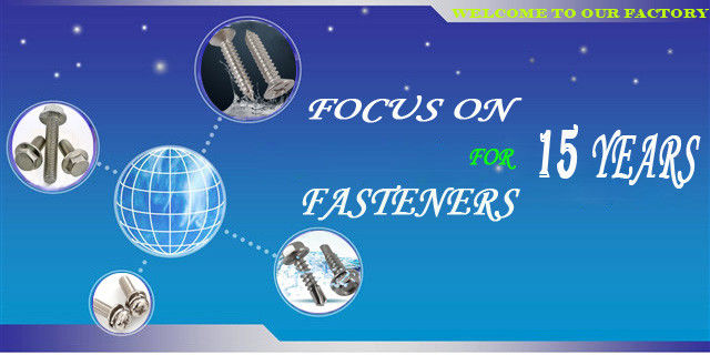 China best Stainless Steel Deck Screws on sales